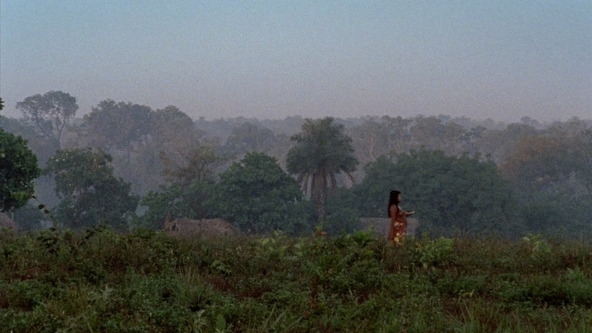 Image from The Dead and the Others Dir João Salaviza, Renée Nader Messora