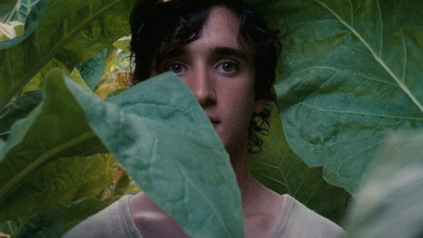Image from Happy as Lazzaro Dir-Scr Alice Rohrwacher