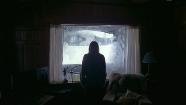 Image from The Lodge Dir Veronika Franz, Severin Fiala